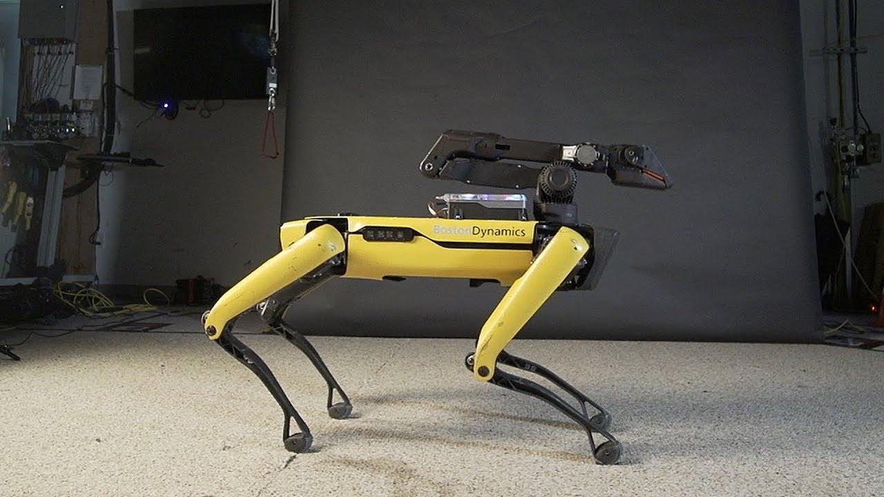 Spot el perro robot