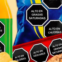Etiquetado frontal: la herramienta para enfrentar el marketing de la comida chatarra