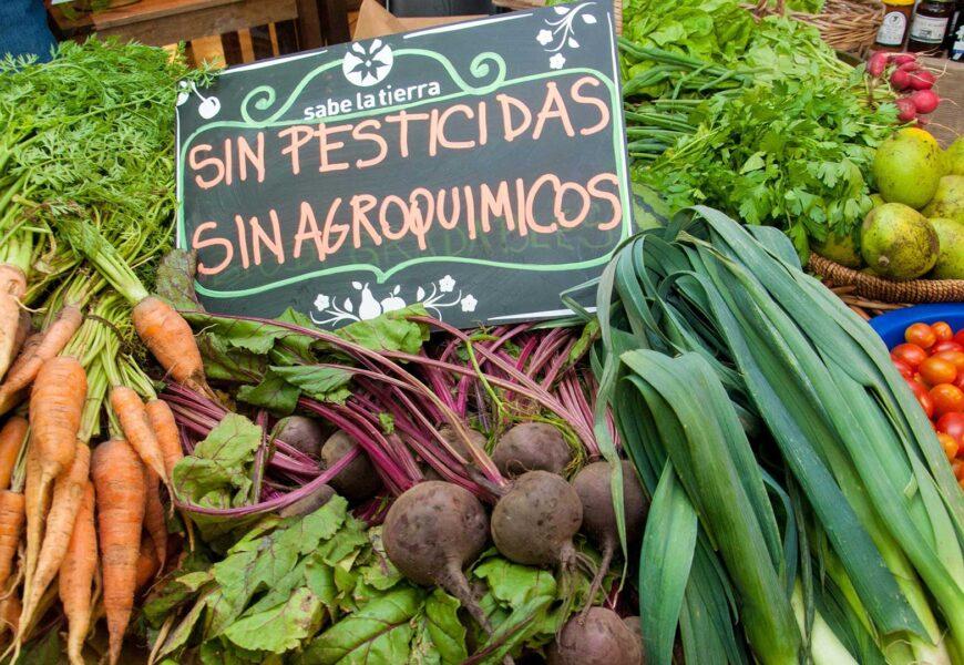 Agroecológicos y orgánicos