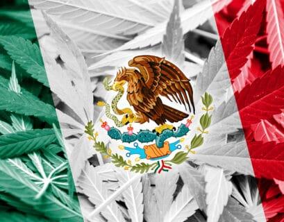 México la legalización de la marihuana