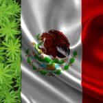 Marihuana es legal en México